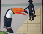 a touch of toucan