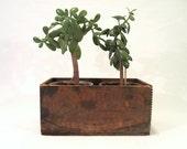 Rustic Wood Vaseline Crate