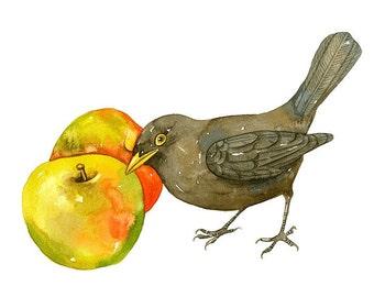 Watercolor painting 7x5 Bird Print, Limited Edition - Blak Bird Art Watercolor by Lorisworld