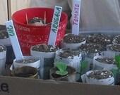 Seedling Starter Newspaper Pots