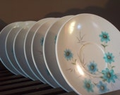 Seven Vintage Flowery Saucer Plates