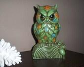 Halloween SALE Whoooo painted flowers on me/// Owl Penny Bank