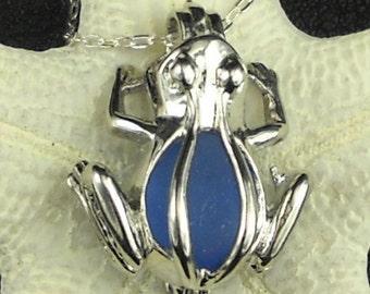 Blue Sea Glass Frog Necklace Frog Locket