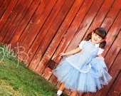Wizard of Oz Dorothy tutu costume.... sizes 6-9 months - 5T