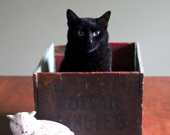 Art Photography - Black Cat in Her Brown Box- Greeting Card