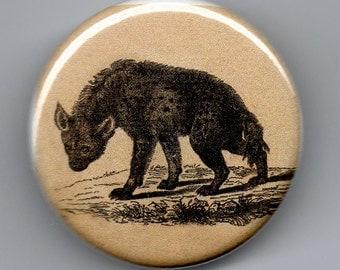 Hyena 1.25 inch BUTTON Vintage Image