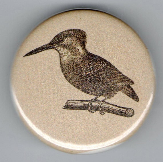 Kingfisher 1 1/4 inch pinback Button Vintage Image