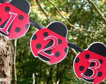 1st Birthday Ladybug Photo Banner MADE TO ORDER