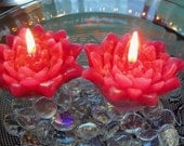 Floating Lily Candles, Set of 12, Unscented, Choice of Color