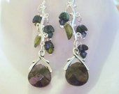 Sterling Silver Vine w/Glass Blossoms and captured Labradorite flat Briolette Earrings