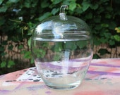 Apple Glass Container