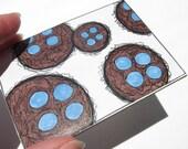 Miniature Art Card- ACEO Birds Nests