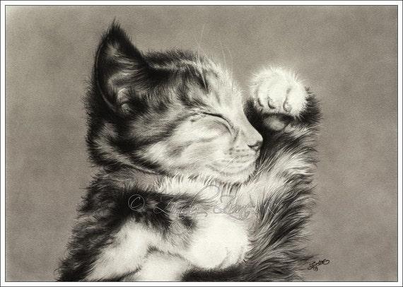 Sweet Dreams Cat Kitten Maine Coon Art Print Glossy Goth Zindy Nielsen