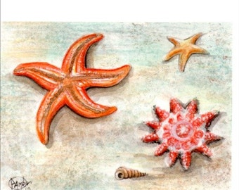 Original ACEO STARFISH .Original Painting Watercolor Card drawing star sea