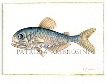 ACEO Original - Deep Fish No.1- Collectible miniature painting ....watercolour card nature