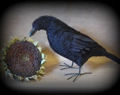 Corvid the Crow E-PATTERN by cheswickcompany