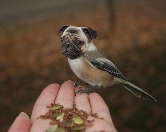 Funny Animal Photography - Half Bird Half Dog Print - Pug Dog - Chickadee - Bird Body - Pug Face - Weird Animal - Strange Species - 8x10