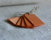 wood gift tags, PuMpkiN x6, gift hang tags for packaging