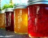 Reserved for Bobette- Pick ANY 6 -8oz jars of Jam/Jelly-Your choice of flavors