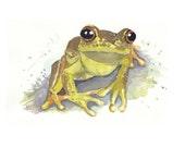 Frog - ORIGINAL Watercolor Painting - 10x8