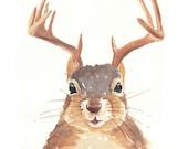 Original Squirrel Watercolor - Deer Antlers, Animal Illustration, 8x10