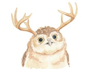 Owl Watercolour - Original Painting, Antlers, Owl Illustration, 8x10