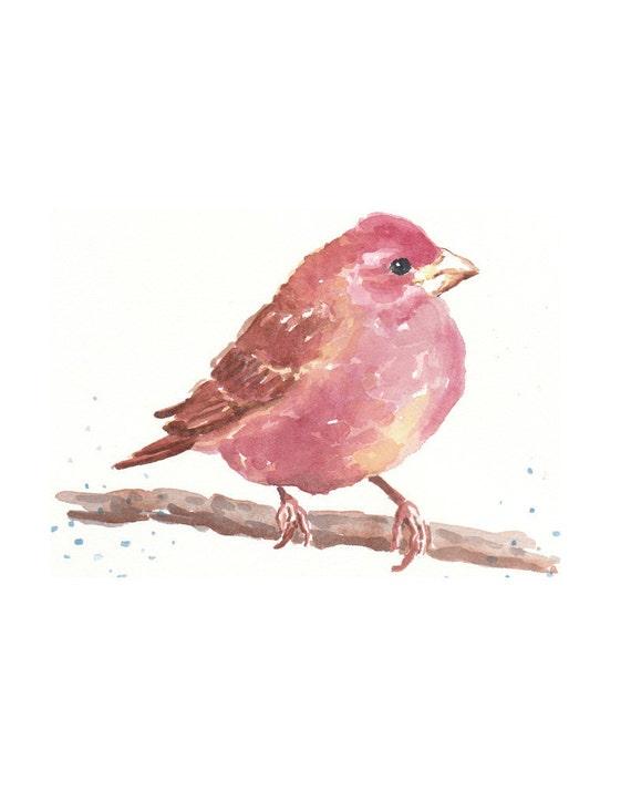 Sale - Bird Watercolor - Original Painting, Nature Art, Purple Finch