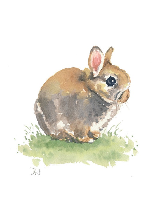 Rabbit Watercolor - Bunny Painting, Original Art, Nursery Art, Dwarf Rabbit, 8x10