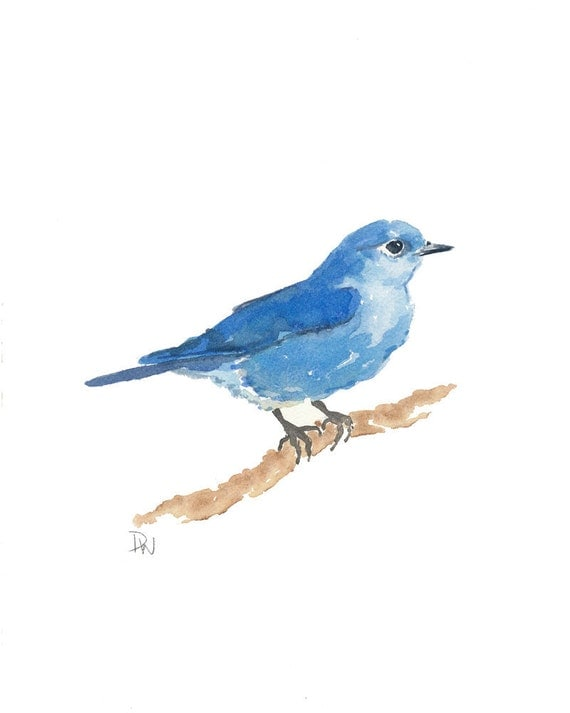 Original Bird Watercolor - Mountain Bluebird, Nature Art, Bird Illustration, 8x10