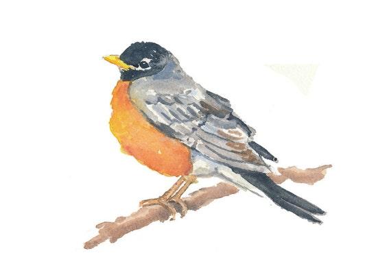 Sale - Original Bird Watercolor - Animal Illustration, American Robin, Nature Art, 7x5