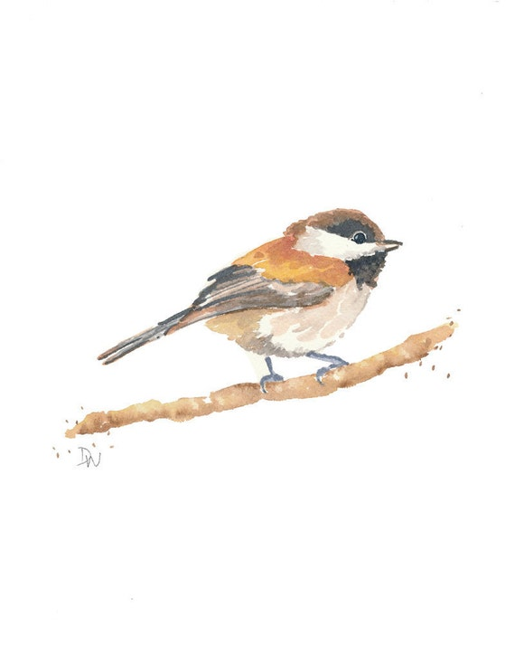 Bird Watercolor - Chickadee Bird, Nursery Art, Original Painting, Nature Art, 8x10