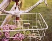 Fine Art Polaroid- Summer Love- Alicia Bock,