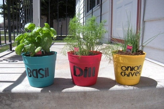 Herb Labels - Vinyl Wall Art, Graphics, Lettering, Decals, Stickers