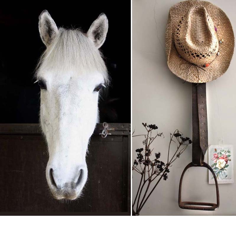 Horse Western Home D Cor Accessories Equestrian Themes: DIY Stirrup Projects On Pinterest