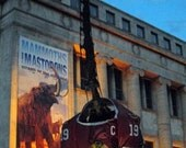 CHICAGO BLACKHAWKS Jersey Dinosaur Stanley Cup 8x10 Photo