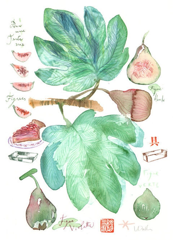 Fig tart Original watercolor painting Food art Kitchen decor Fruit Illustration Botanical french green dirty pink wall hanging