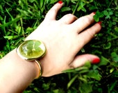Wearable Plant Real 4 leaf clover lucky bangle bracelet in shiny gold