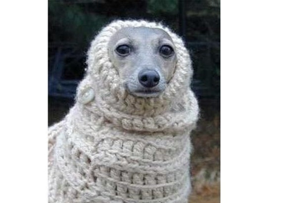 Free Crochet Pattern Dog Snood : DOG SNOOD SEWING PATTERN My Sewing Patterns
