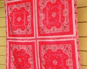 Red Bandana and Gingham Baby Cowboy Cowgirl Western Quilt