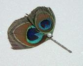Peacock Hair Pin, bridal peacock feather hair pin with freshwater PEARL / BRIDESMAID GIFT