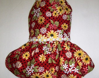 Harness-Dress for small dog daisy flower (LAST ONE)