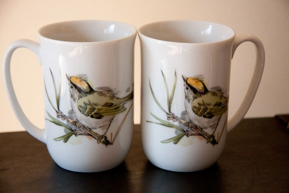 Song Bird set 2  vintage china cups by Enesco 1976 summer kitchen mug set
