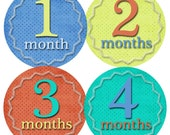 Monthly Onesie Stickers..Shades of Sun...Waterproof...Extra Durable...