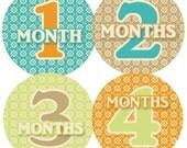 Baby Month Stickers Baby Boy Monthly Onesie Stickers Monthly Baby Sticker Boy Baby Shower Gift Photo Prop Baby Milestone Sticker