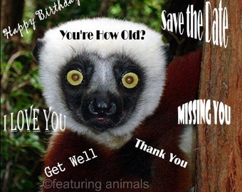 You're How Old  - Lemur - Blank Notecard OR Choose the Occasion AND the Inscription - Personalize  Your Greeting