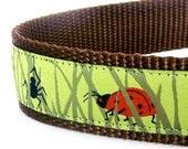 Dog Collar - Woodland - It's a Bug's Life - 1 inch width / Last One
