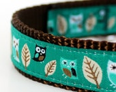 Owl Dog Collar in Teal Green, Hootie Owl Pet Collar, Adjustable Ribbon Dog Collar