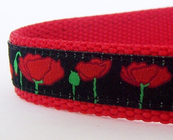 Poppy Fields Dog Collar