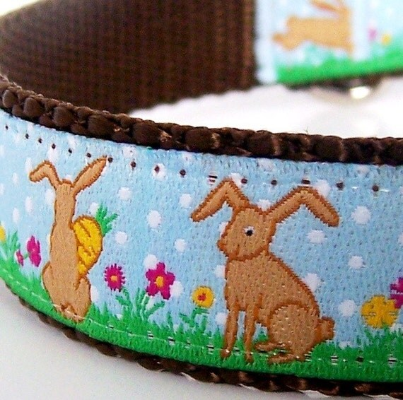 Bunny Hop dog collar - 3/4 inch wide - last one