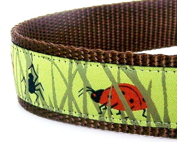 Dog Collar - Woodland - It's a Bug's Life - 1 inch width / Last One